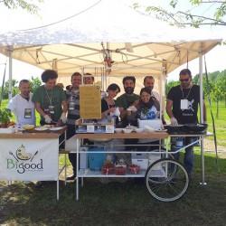 Bigood a Ortinfestival